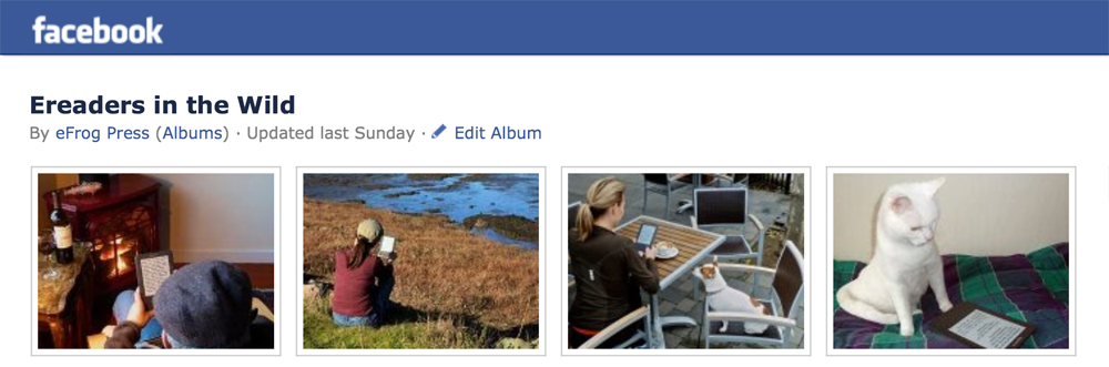 Facebook photo albums, images, photographs, increase interactivity